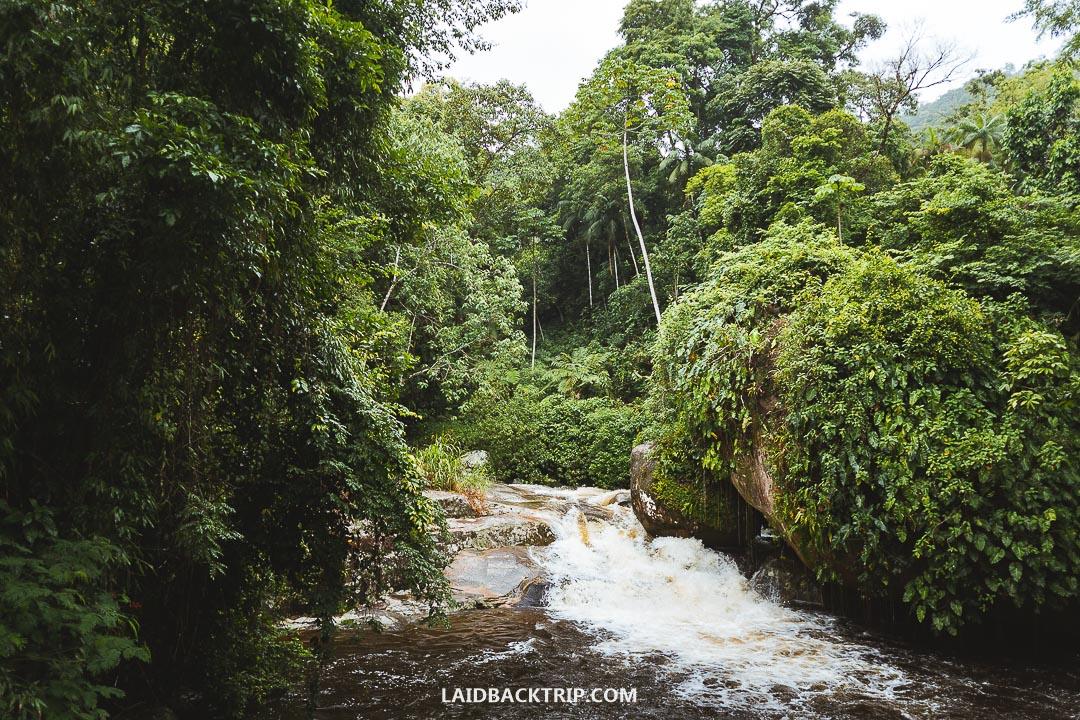 Tarzan Falls are just a little bit farther upstream.