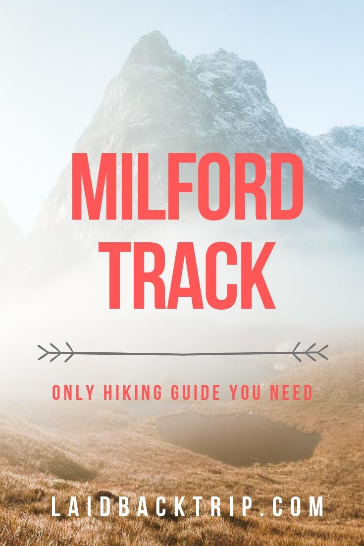 Milford Track Guide