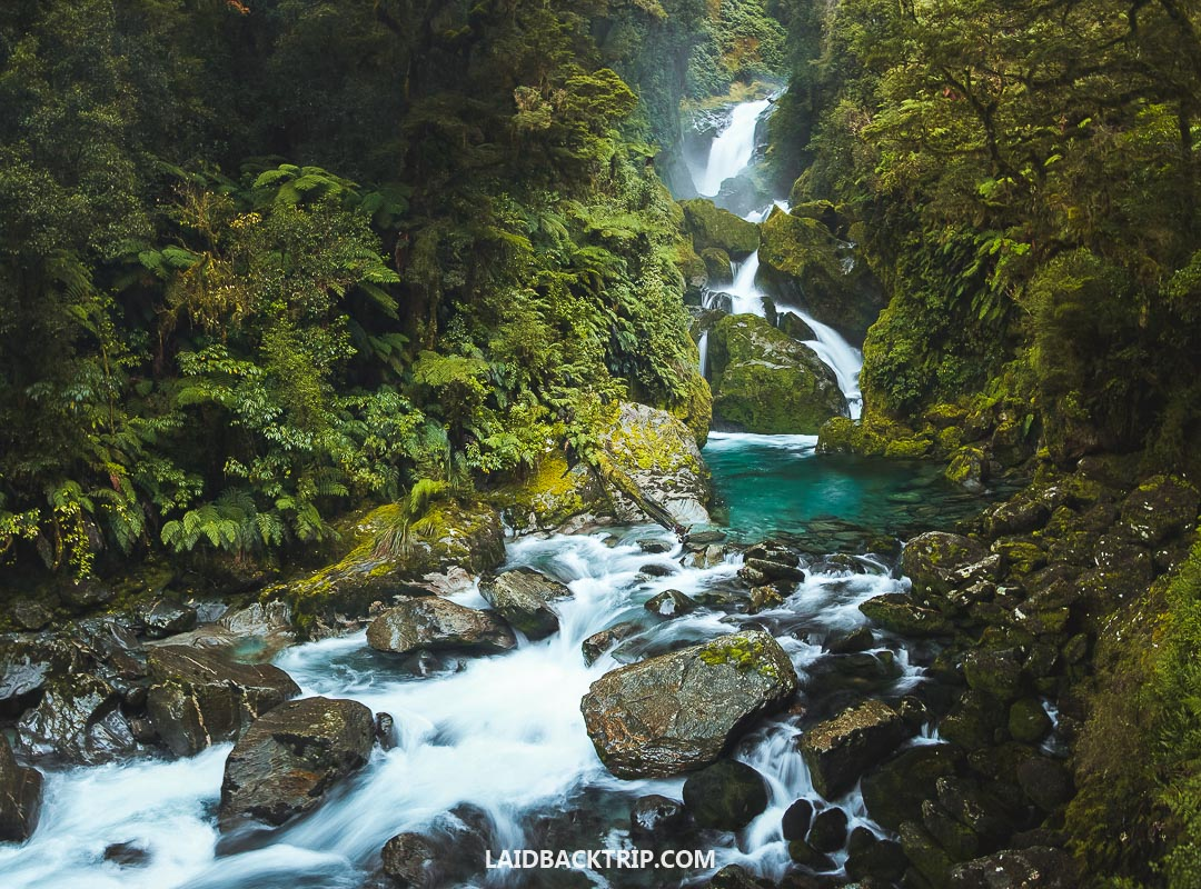 Milford Track is one of our all-time favo
