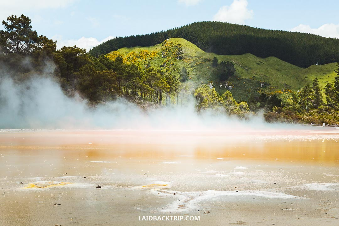 Best things to do in Rotorua, New Zealand.