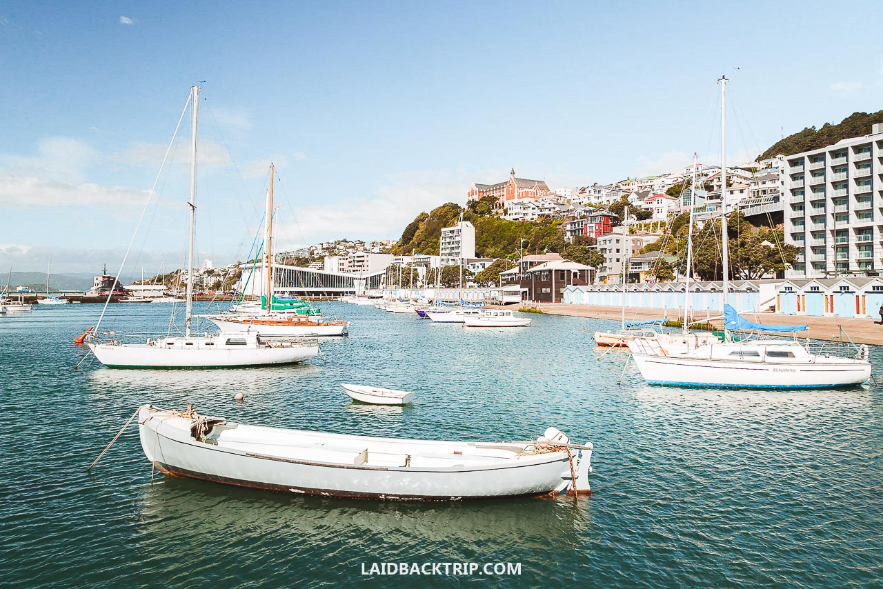 Here is our guide on the best things to do in Wellington, New Zealand.