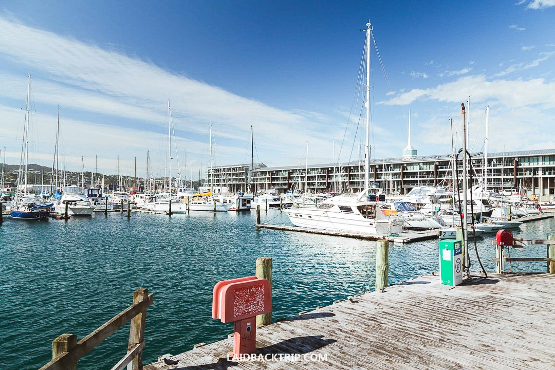 Wellington harbor is perfect for a leisure walk in the afternoon.