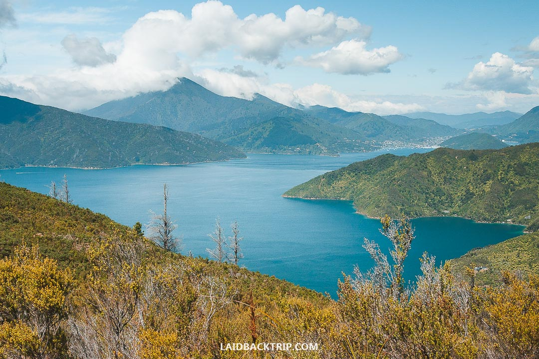 You need to book the ferry between Wellington and Picton in advance.