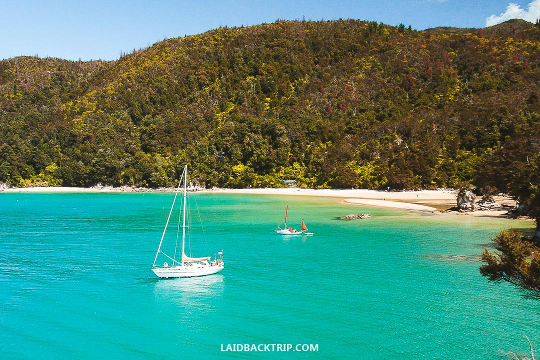 Nelson is a gateway to famous Abel Tasman National Park.