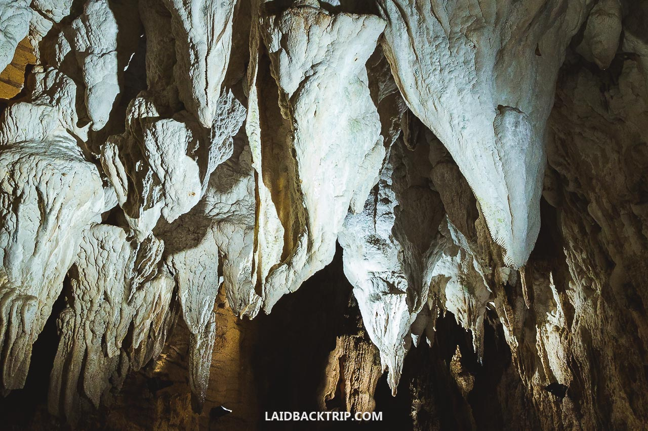 Here is a travel guide to Waitomo Glowworm Cave, New Zealand.