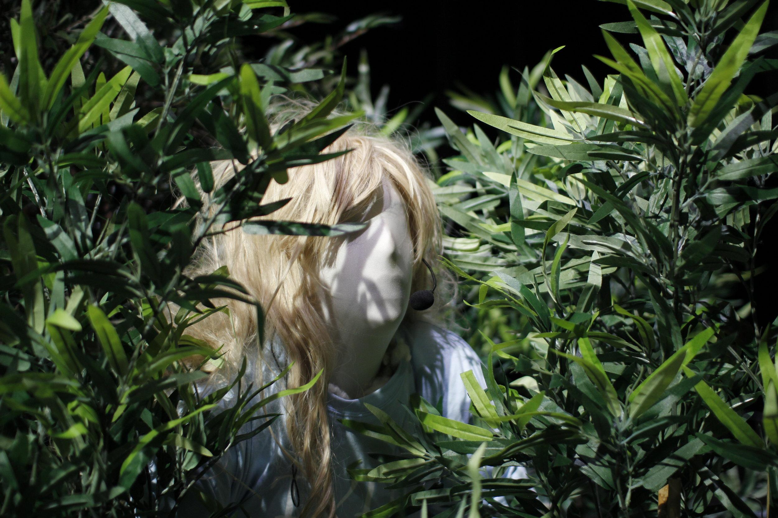 Photo: Talking Timber