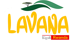 Lavana_logo small.png