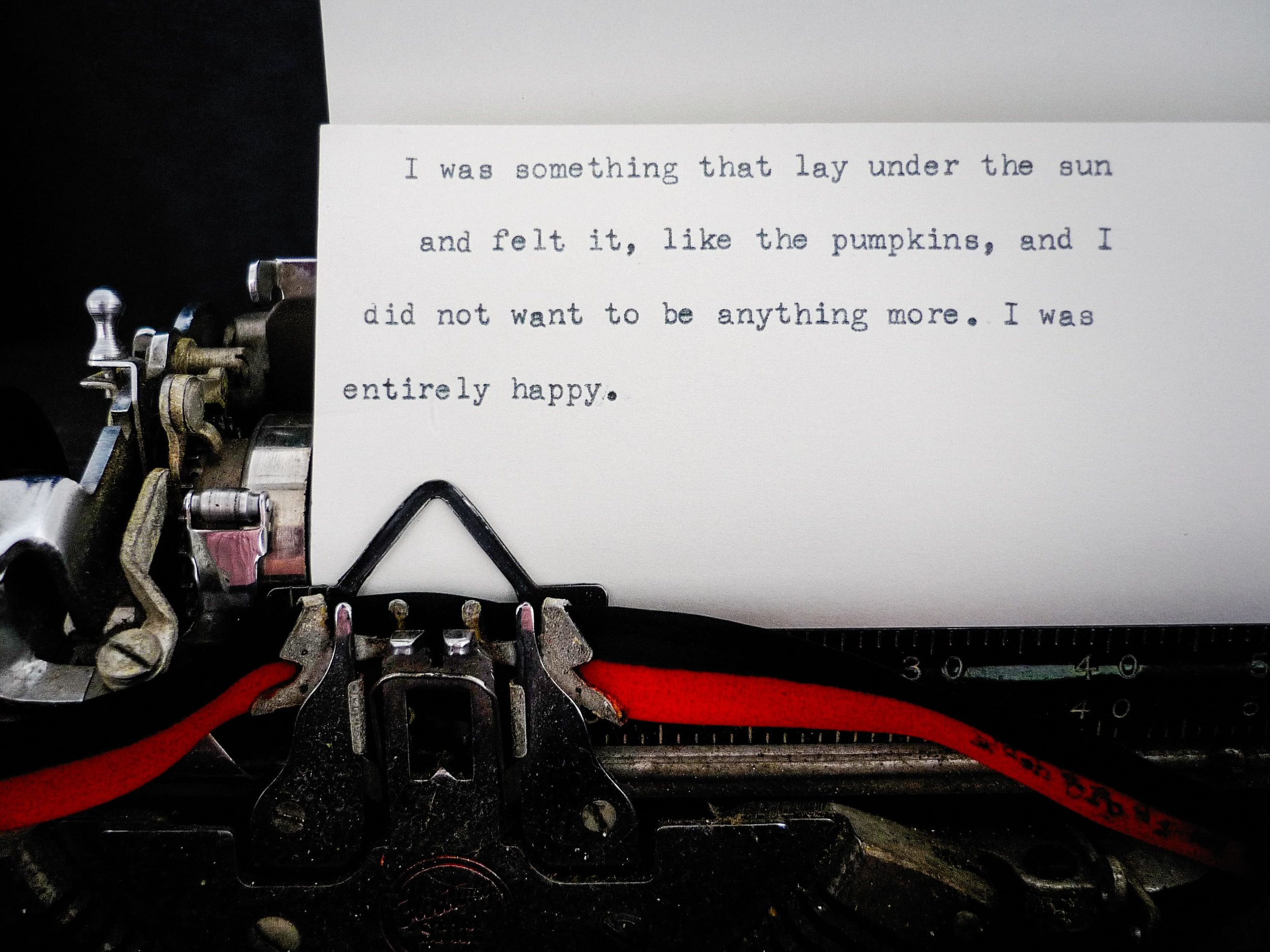 A Close Read: My Ántonia   (2010)   Installation  50 × 50 ft.  Detail of typewriter on paper  Feldenheimer Gallery, Reed College, Portland, OR