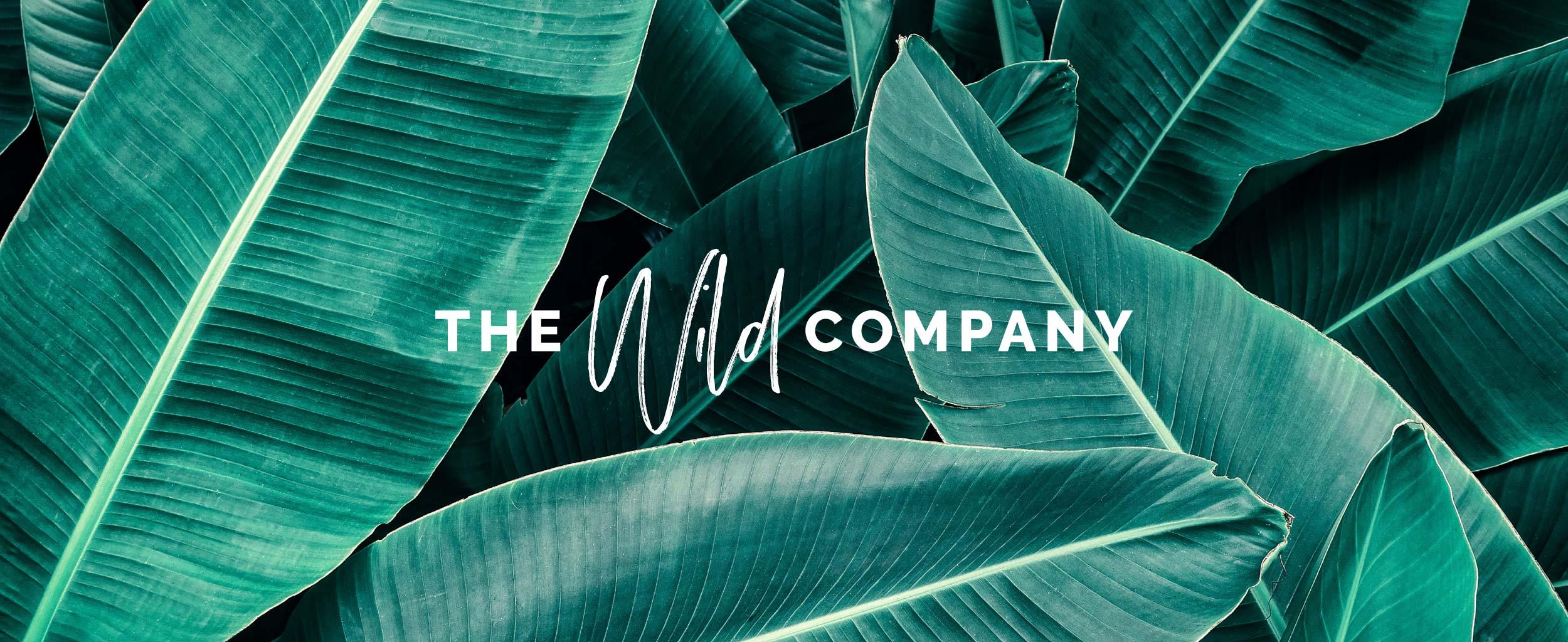The_Wild_Company_Branding_03.jpg
