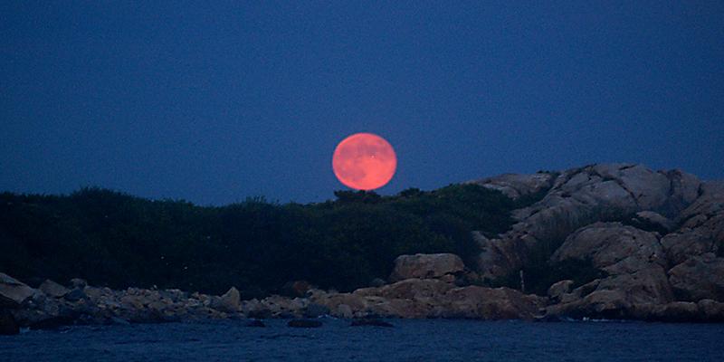 Full Moon Paddle v2.jpg