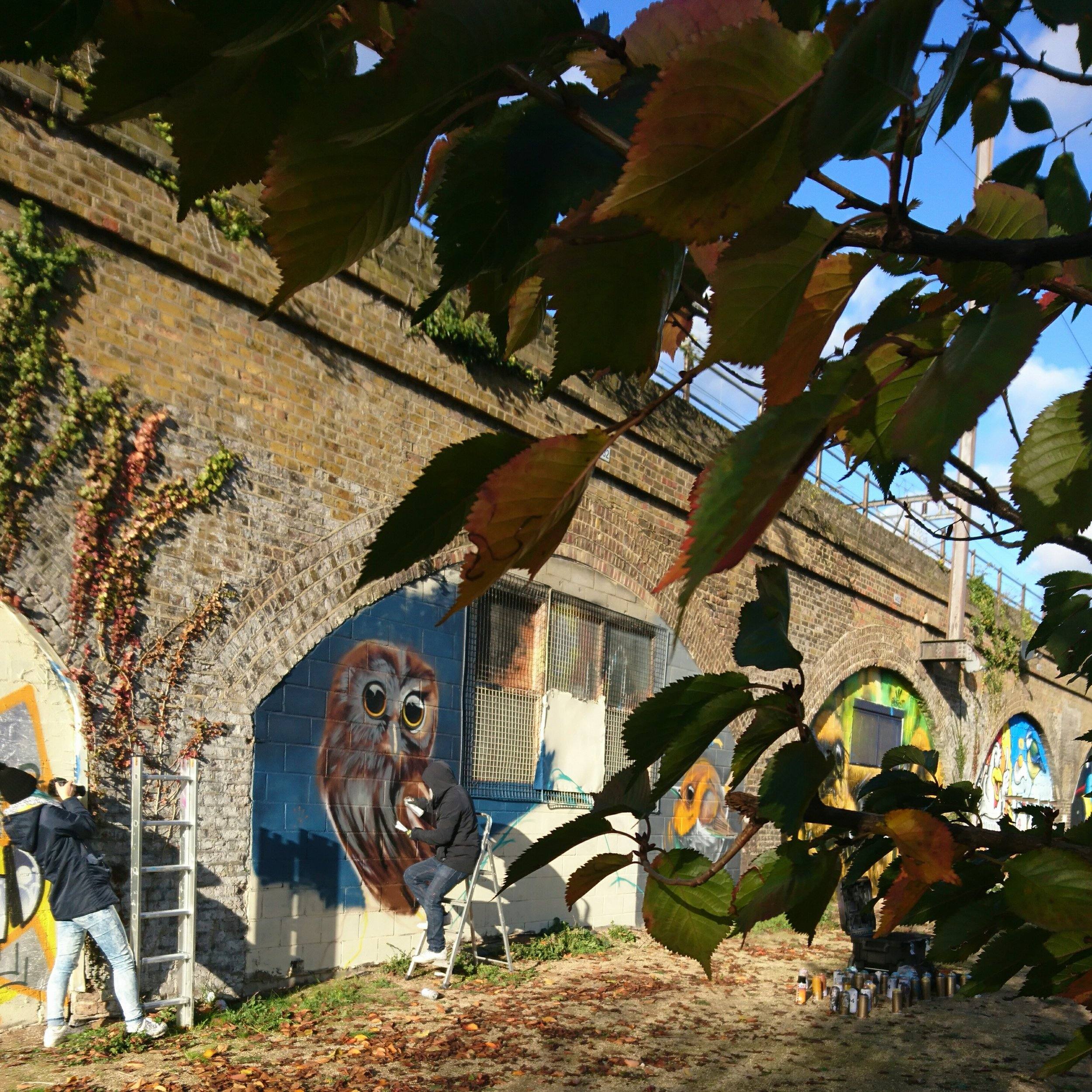 Nature Mural Project in Tower Hamlets, Supported by GreatArt and Brewers Paint