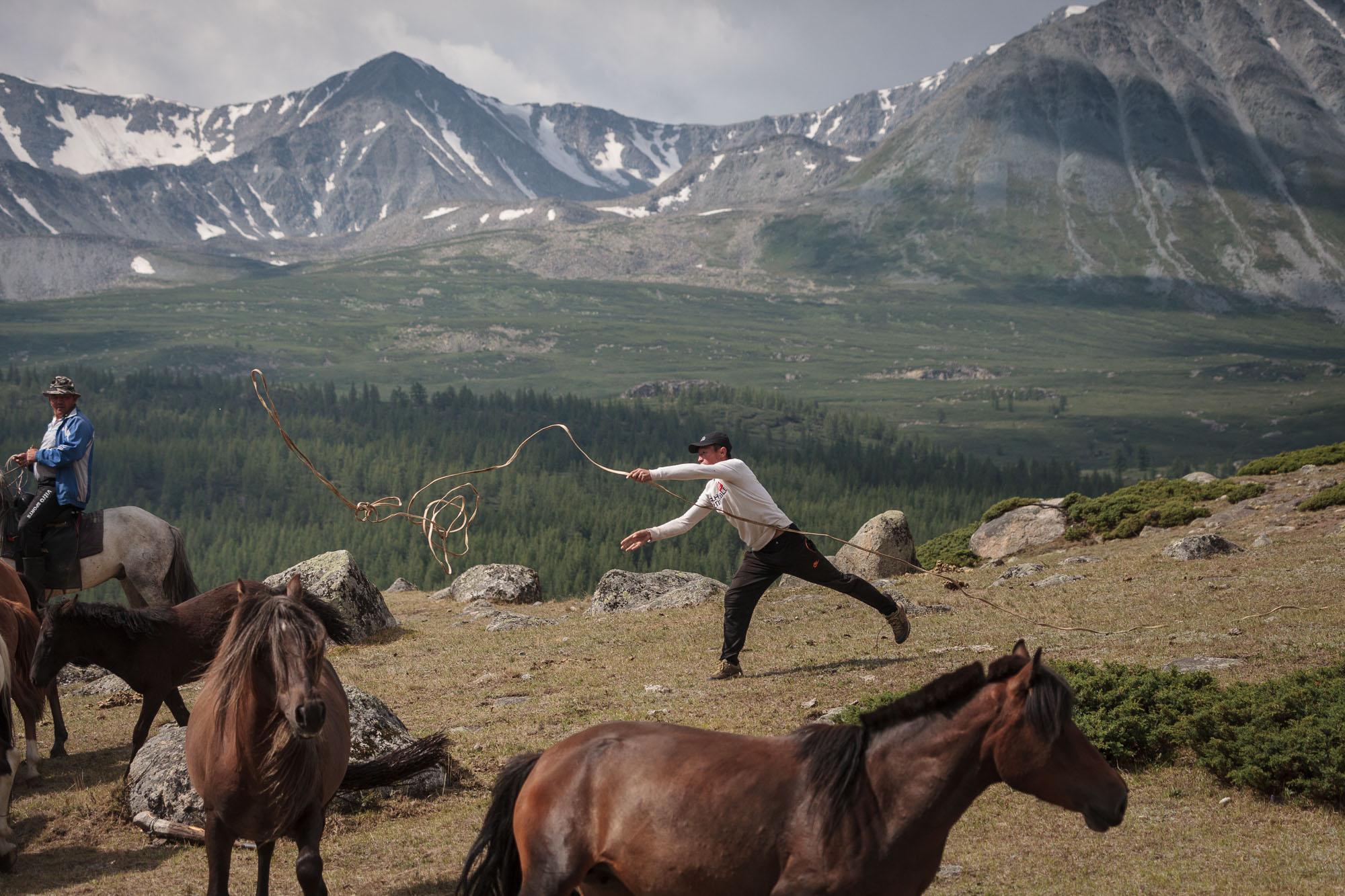 milking horses blog-0616.jpg