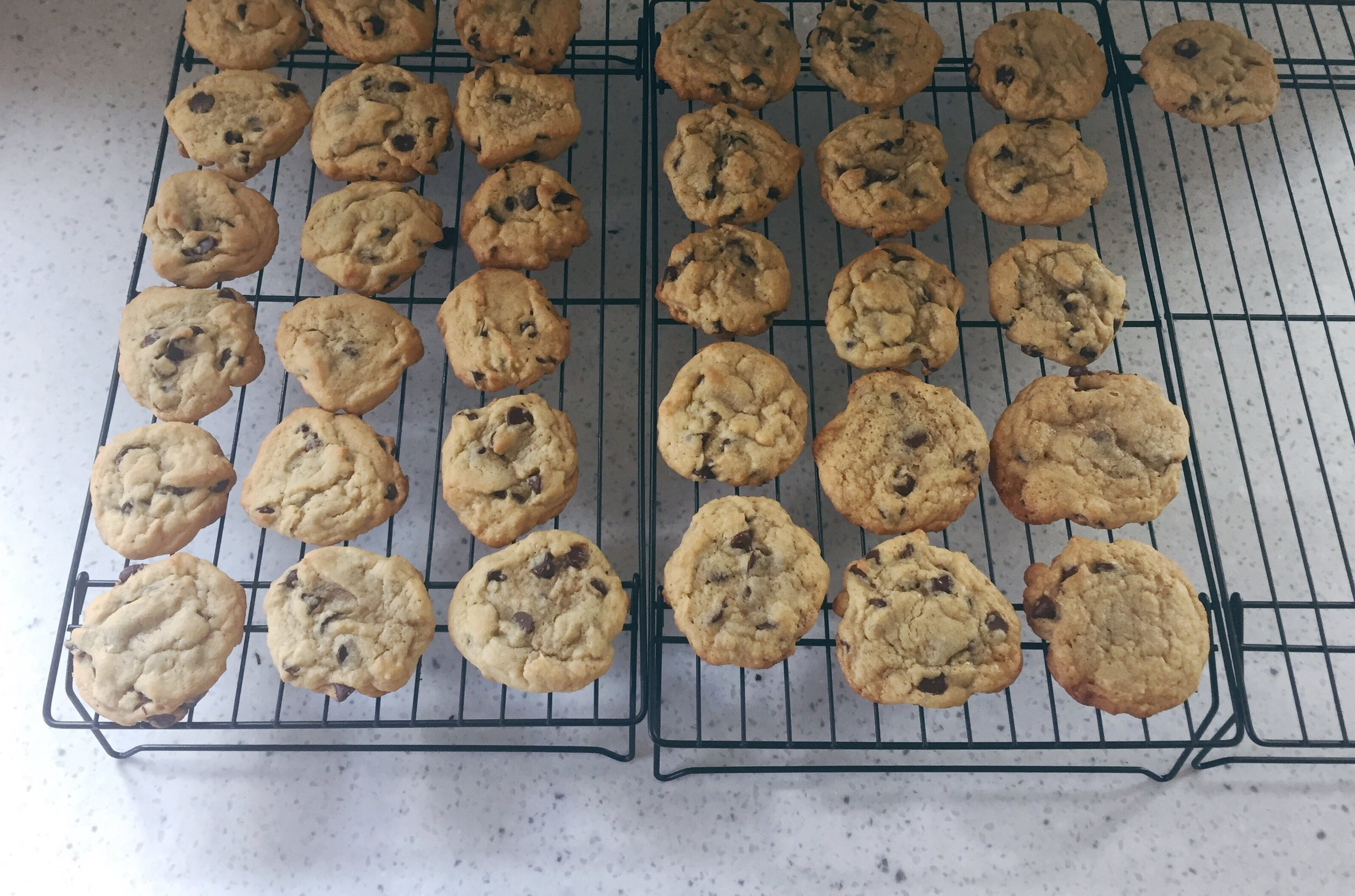 Chocolate Chip Cookies | Cassia & Co.