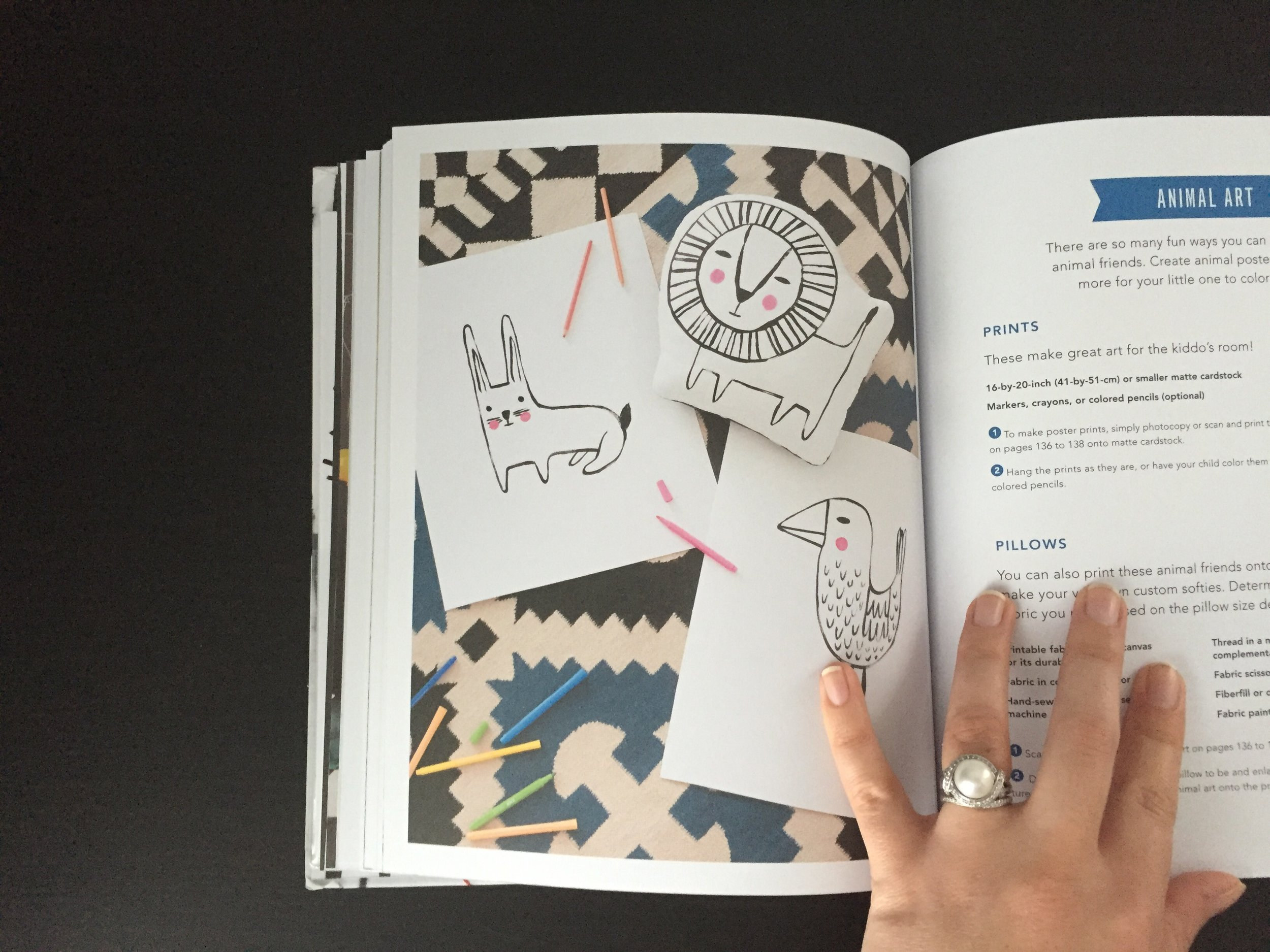 Playful Book Review   Cassia & Co.