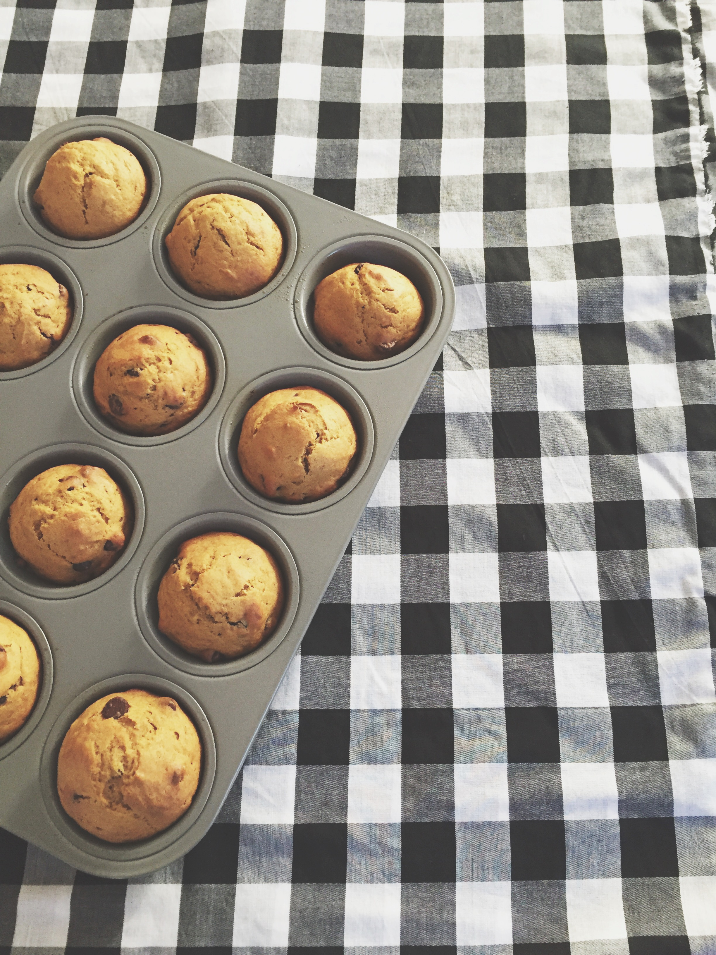 Pumpkin Muffins with Chocolate Chips | Cassia & Co.