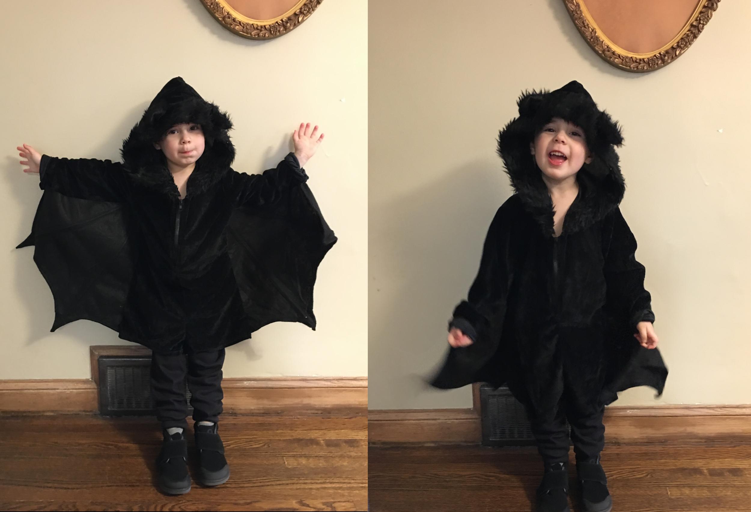 Finn bat costume.png