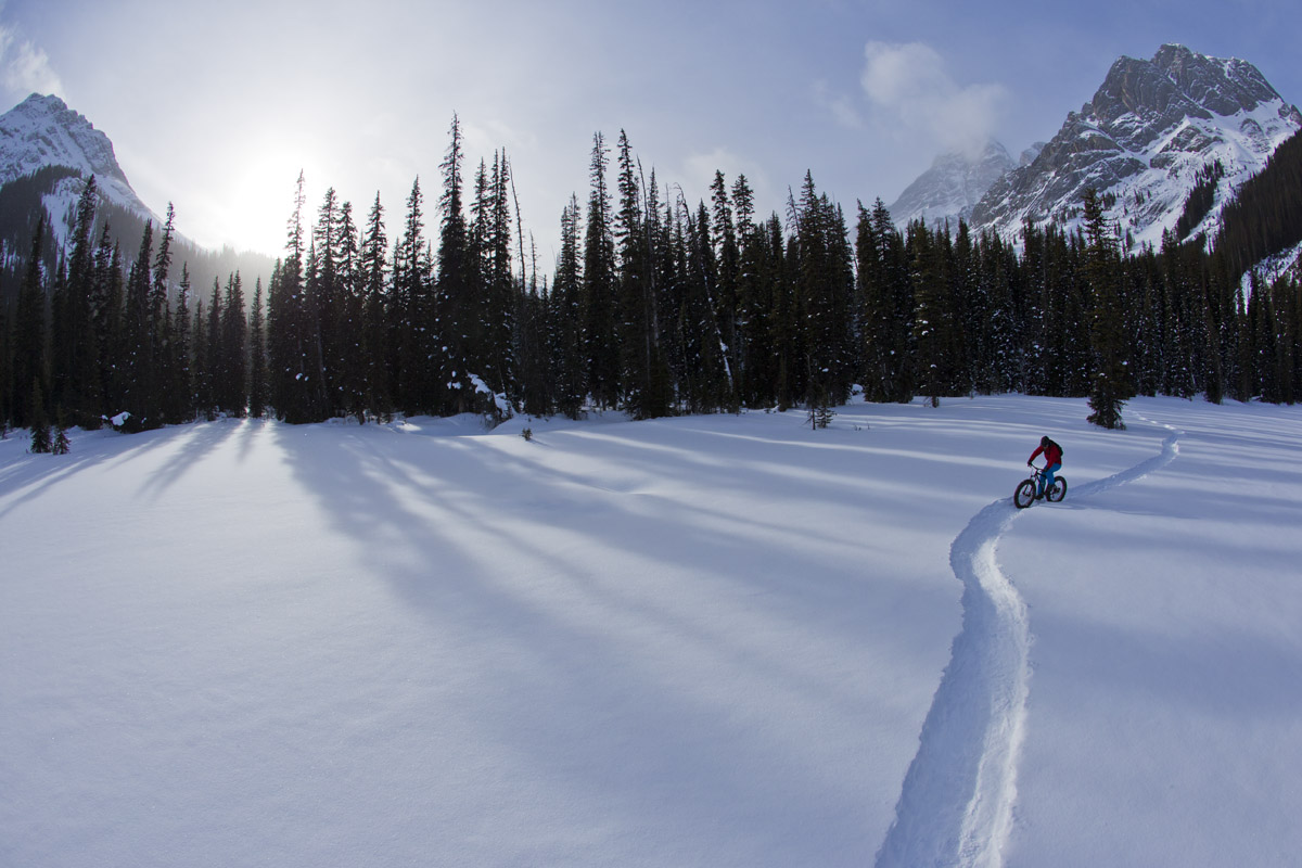 Dave Kinn Kananaskis Country, Alberta