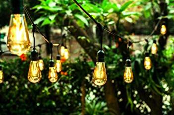 LED String Lights / #015 / $25