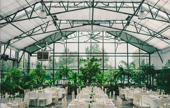 Aquatopia Conservatory - Ottawa, ONA wedding surrounded by tropical plants and greenery.