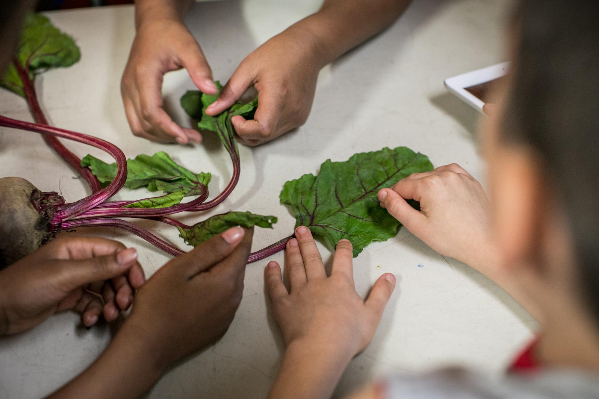 Our Partner   Inspiring a Healthier Generation.
