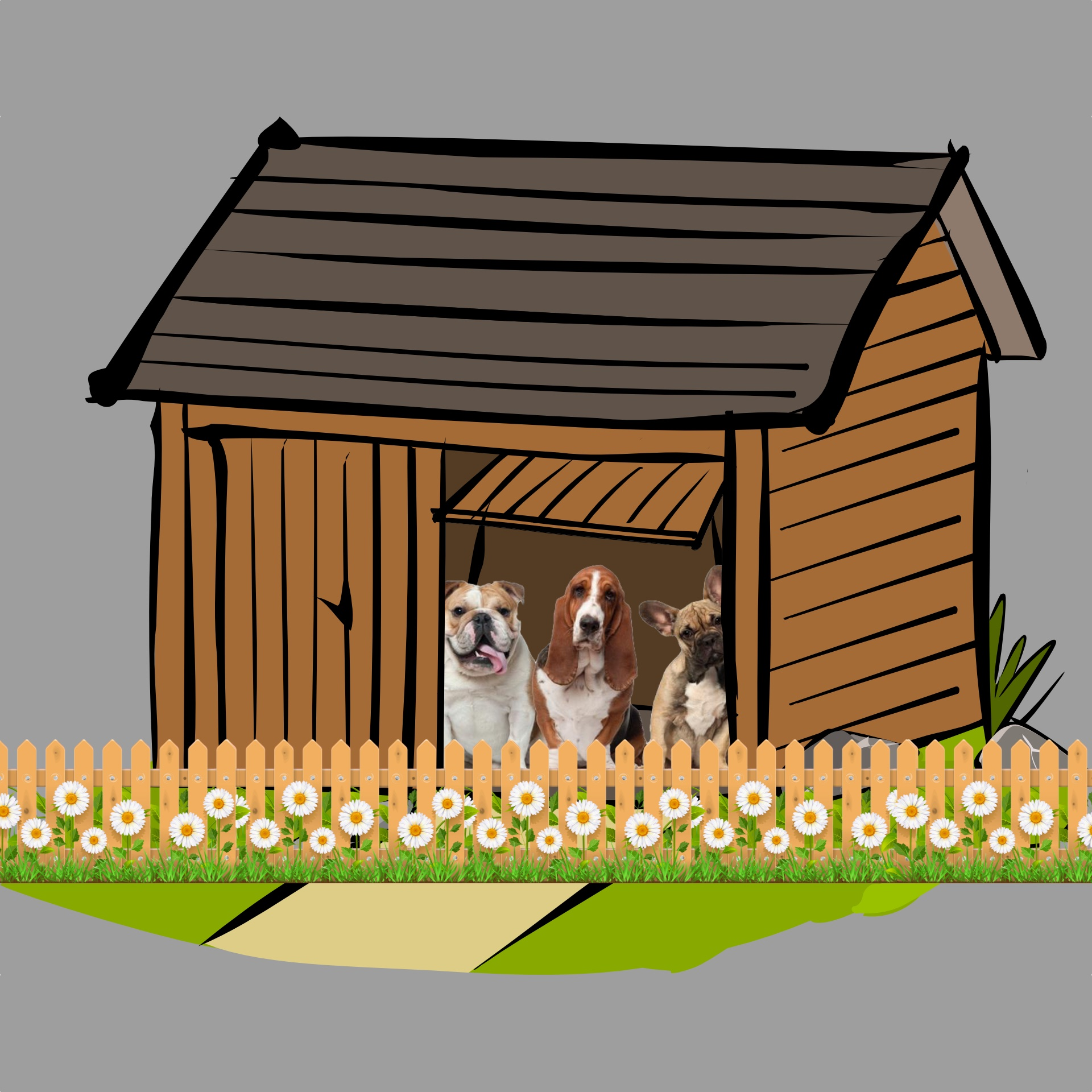 Dogs in Shed with fence.jpg