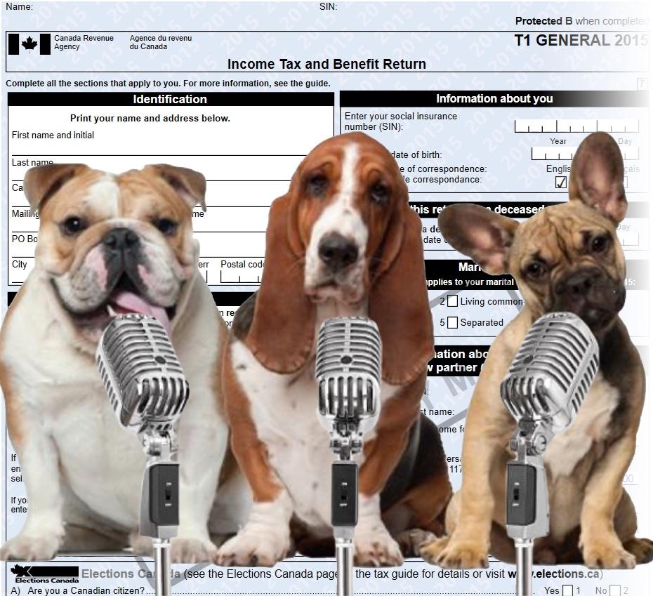 The Dogs do their taxes