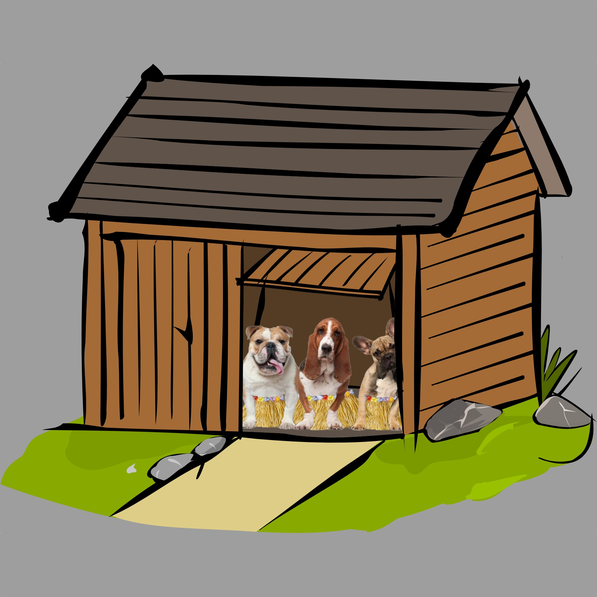 Hula Dogs in Shed.jpg
