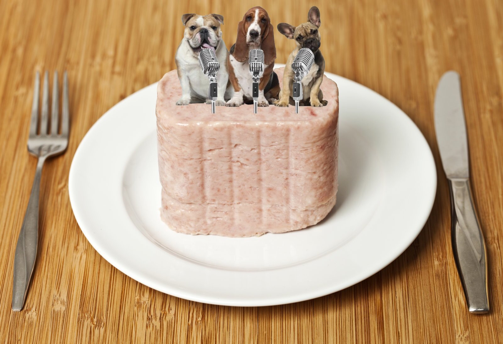 Dogs in Spam