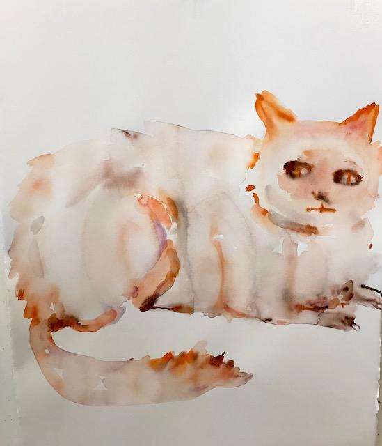 """Fat Cat"""