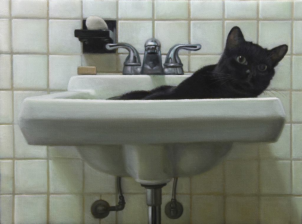 """Cat in Sink"""
