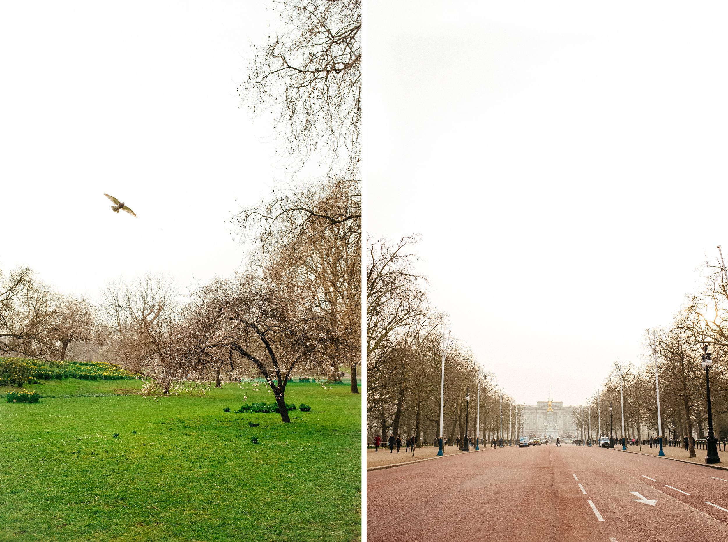Untitled 2-4.jpg