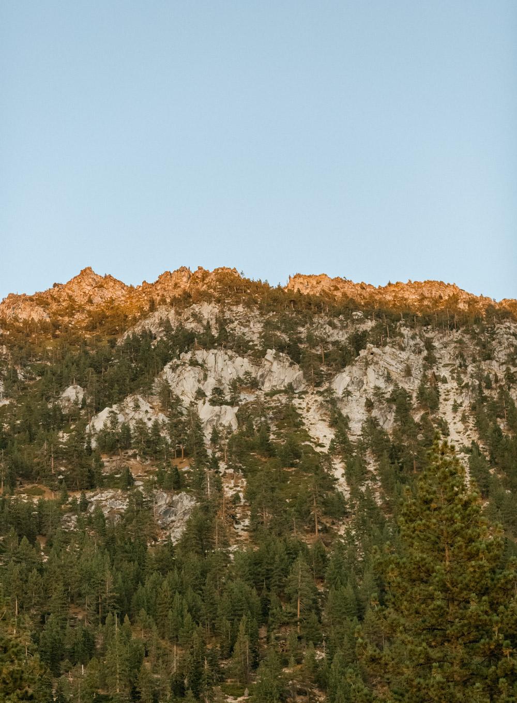 Adorn Life Photography Lake Tahoe Maternity Photographer Couples Photographer IMG_1308-Edit.jpg