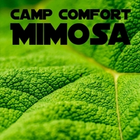 Mimosa (Sigle)2018 - After taking a short break, Camp Comfort returned to the music with a single Mimosa. This first single reflects a new turn in their career. Listen and enjoy the superior sound quality.