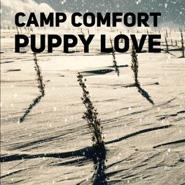 Puppy Love (Single)2018 - This song has become a favorite among fans, as it combines sentimental lyrics with amazing melody. Have a listen and discover the magic of music by Camp Comfort.