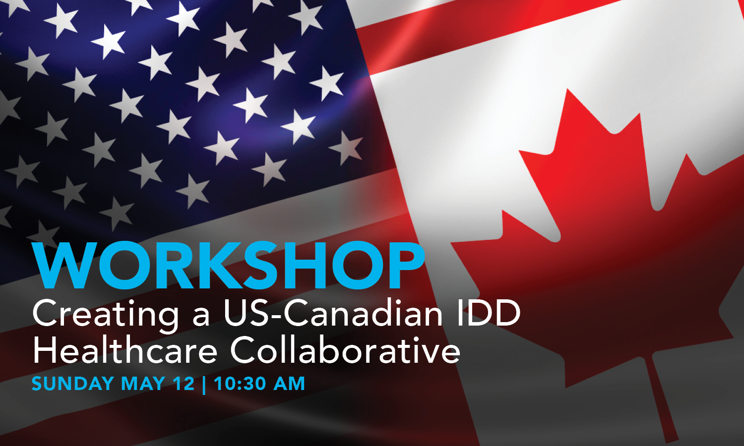 Abstract:  Health disparities and challenges occur despite differences in culture, language and in geography, nor do they stop at the border. This meeting will help bring together IDD leaders in health and supports from both the United States as well as in Canada. There are great opportunities in front of us to work together to help tackle common concerns and issues which exist in both countries.