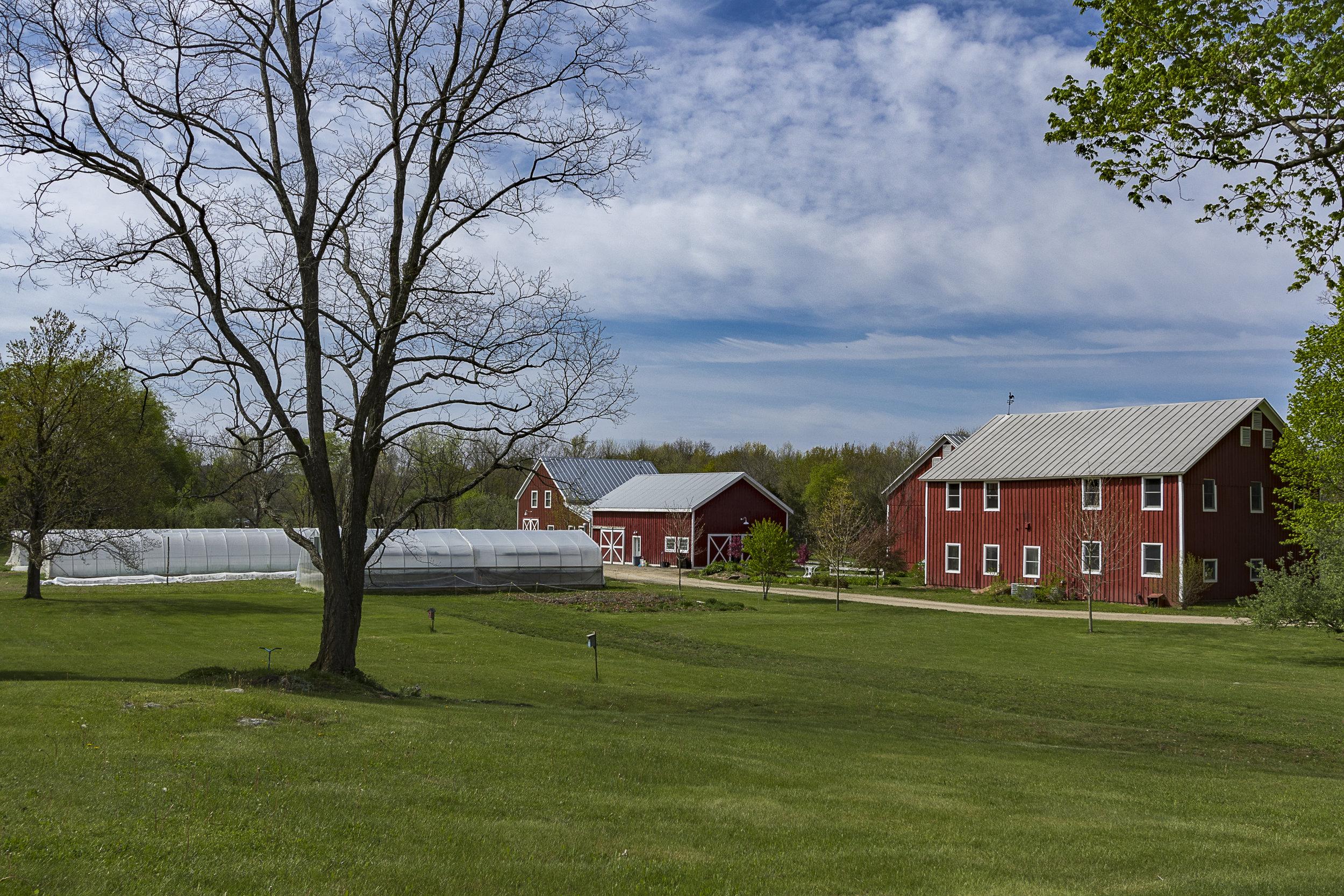 Red-Hook-Farms-1.jpg