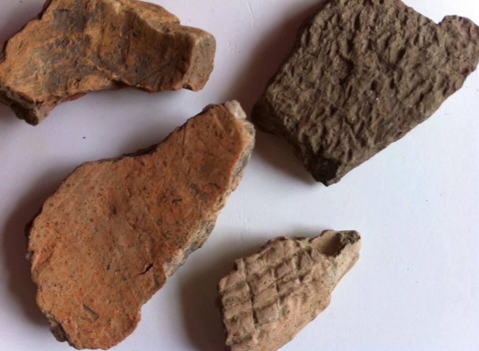 Ohio Historical Archaeological Society.jpg
