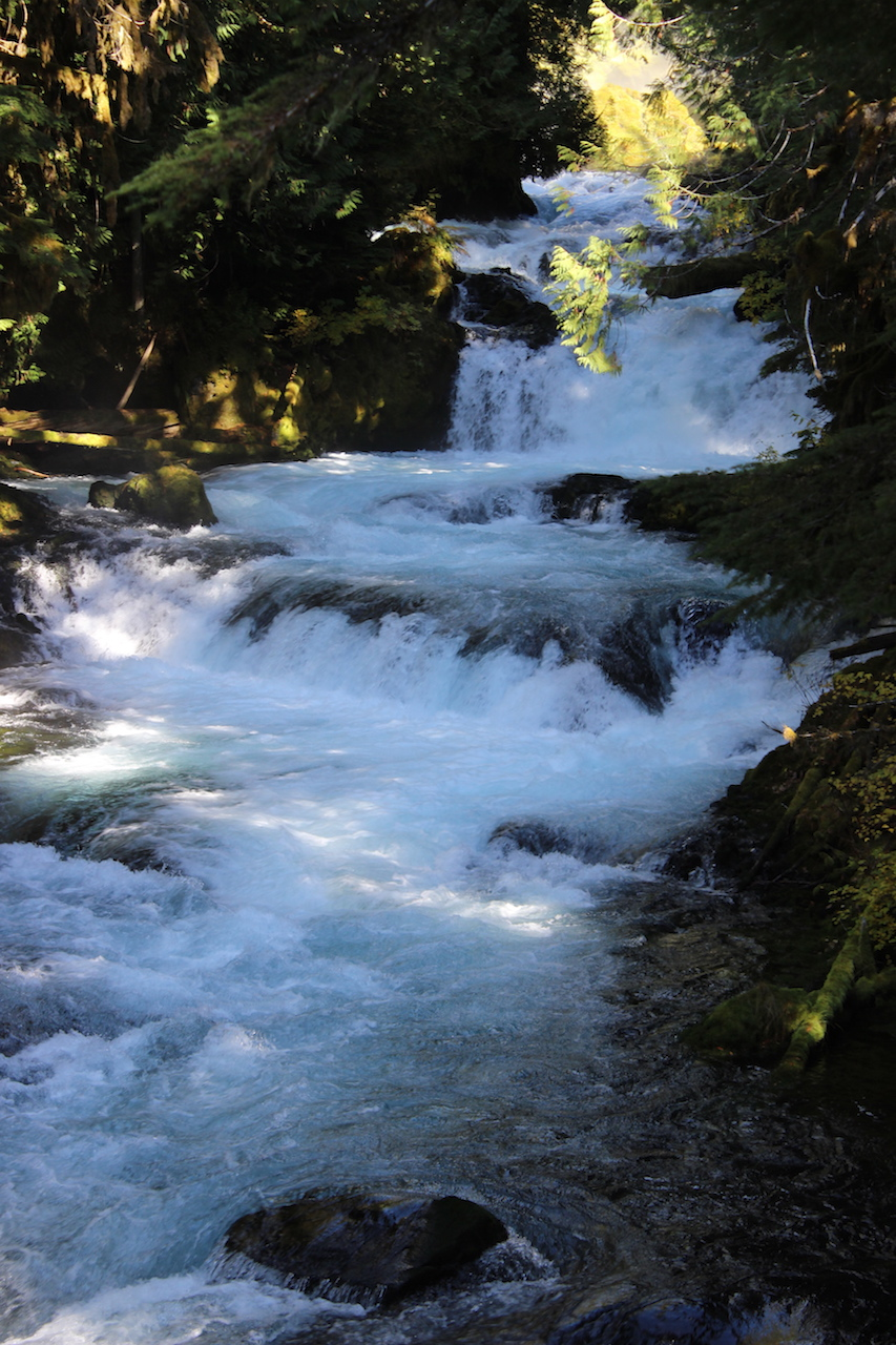 Waterfall on Wychus Creek copy.jpg