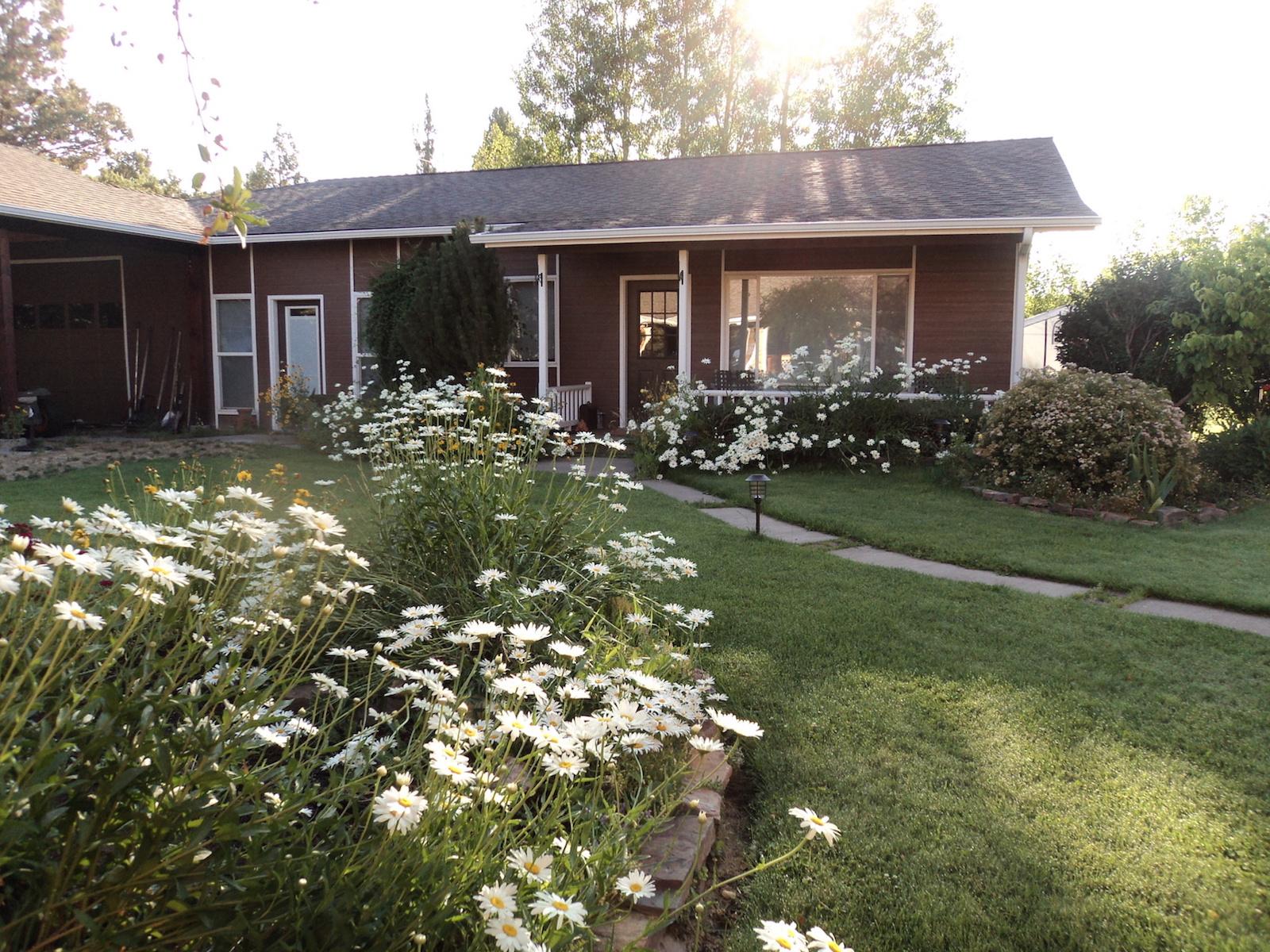 Guest House w daisies.JPG