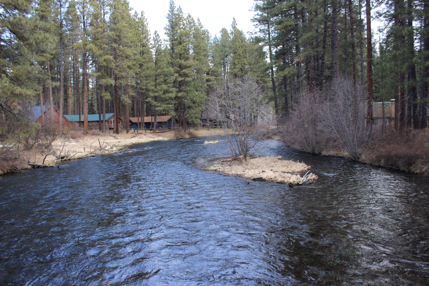 Visit Metolius River & Camp Sherman copy.jpg