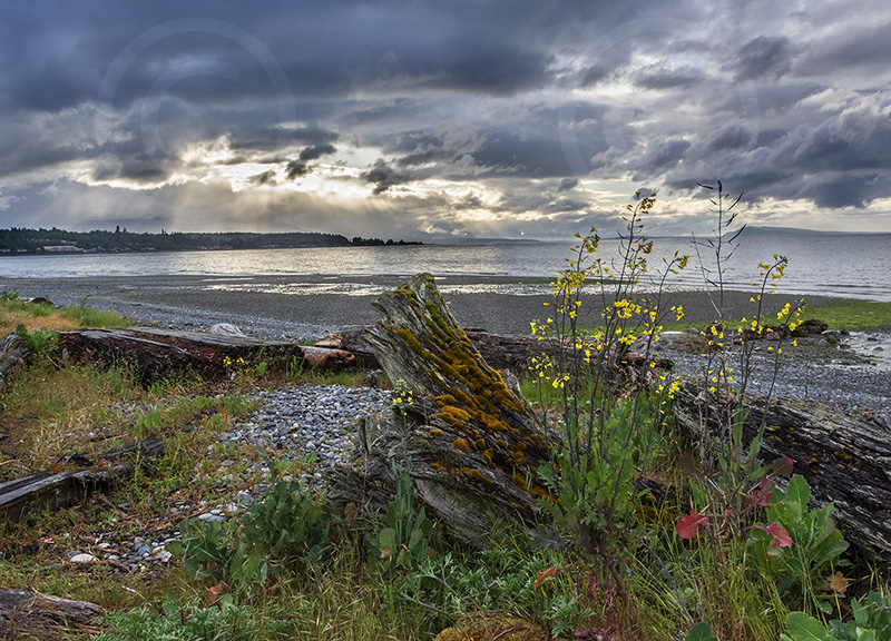 Qualicum Beach-Wes Bergen.jpg