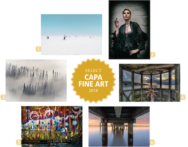 CapaFineArt-images-sm.jpg