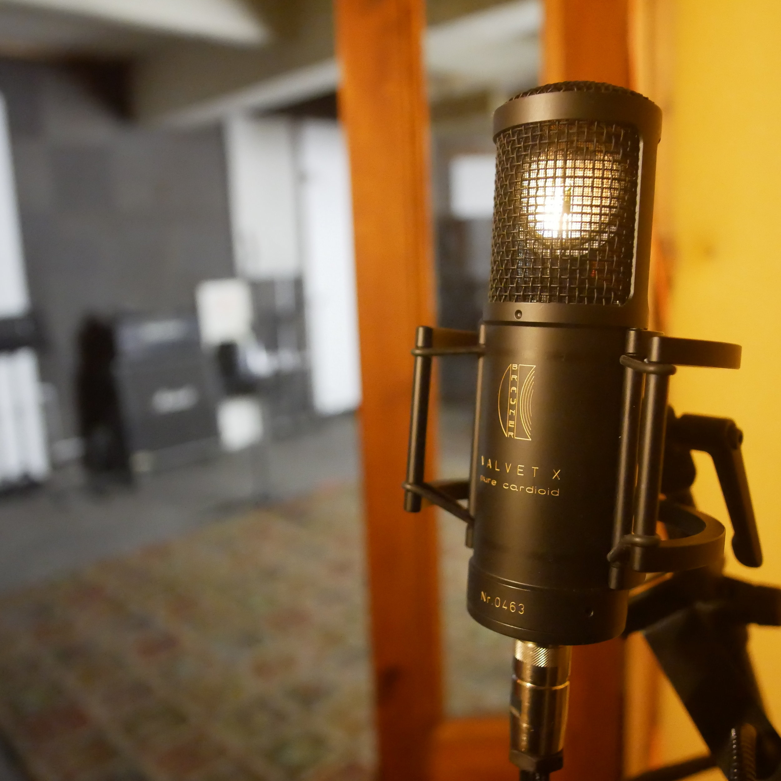 Recording - Having worked on hundreds of projects over the years, I have the knowledge and quality microphones to capture the best of what's thrown at me. Whether you are looking to lay down some top lines, record a live video or produce a studio quality album, I will work with you to deliver it to the highest possible standard. Check out my discography.