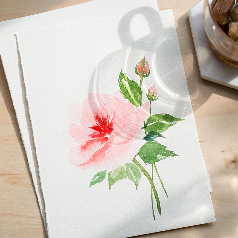 Watercolour - Roses (1).jpg