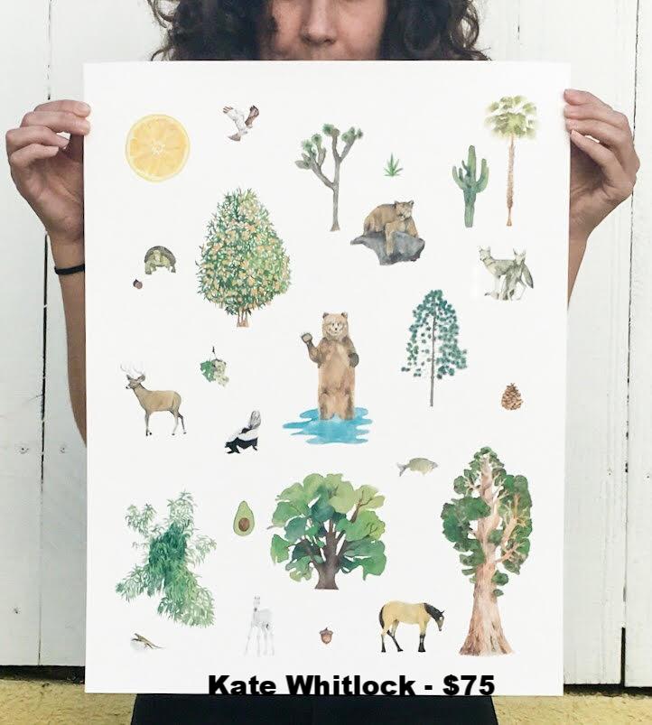 Kate Whitlock_unnamed.jpg