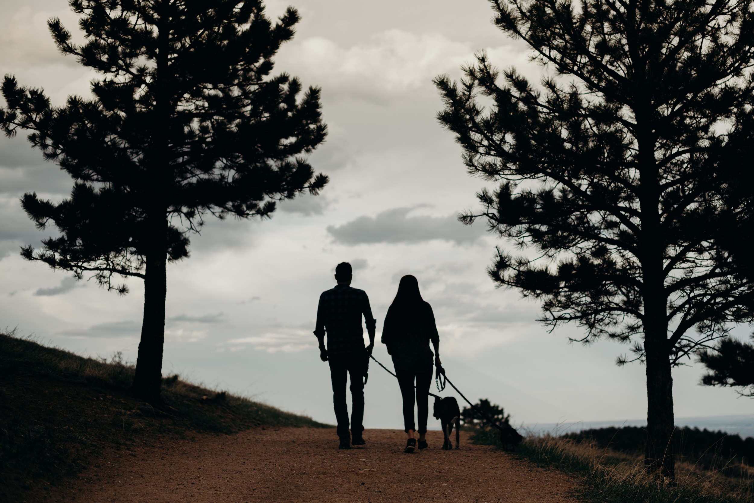 Denver-Colorado-Mt-Falcon-Engagement-Megan-Graham-Photography-7138.jpg