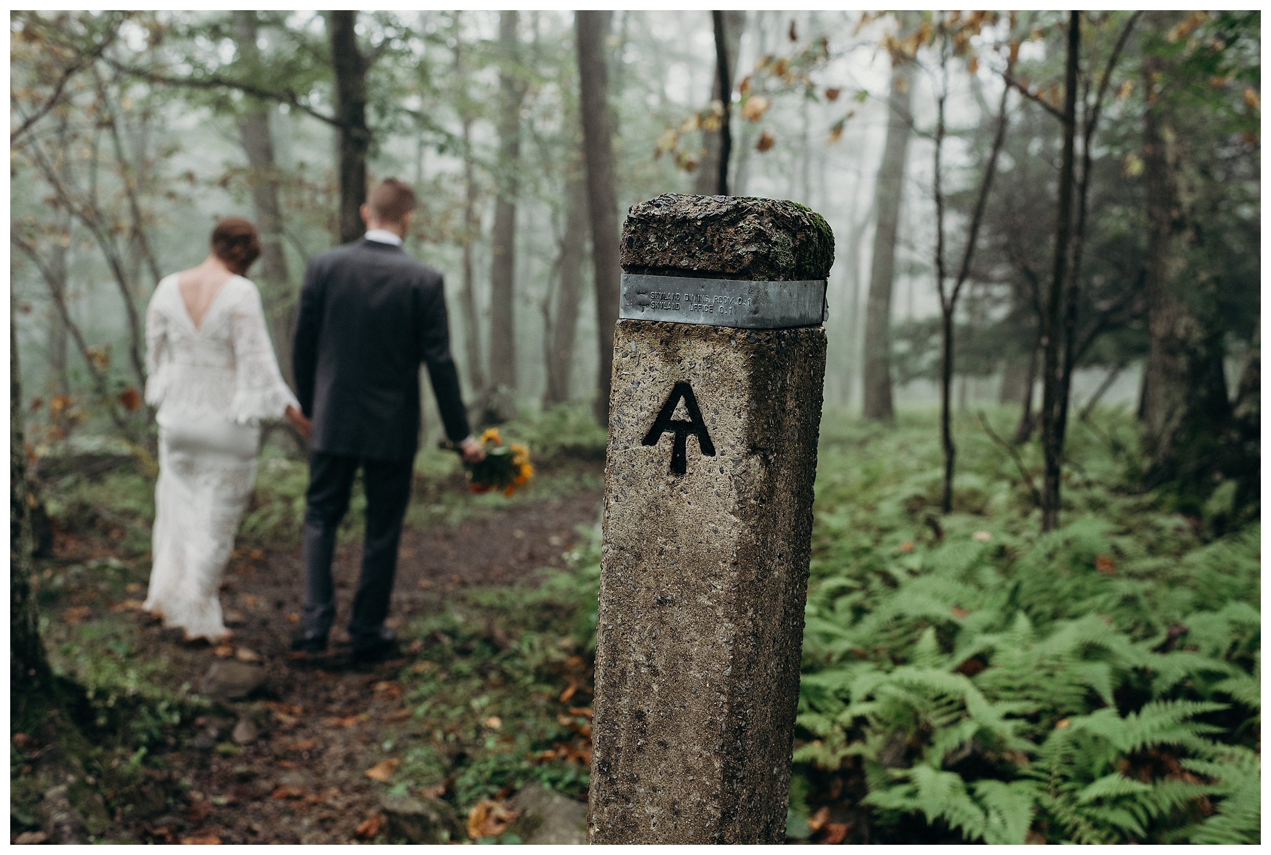 DC-VIRGINIA-WEDDING-PHOTOGRAPHER-SHENANDOAH-NATIONAL-PARK-SKYLAND-ELOPEMENT_0052.jpg