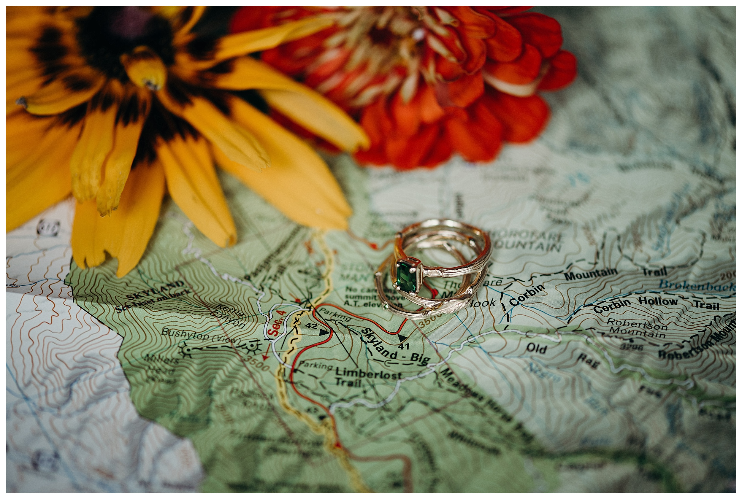 DC-VIRGINIA-WEDDING-PHOTOGRAPHER-SHENANDOAH-NATIONAL-PARK-SKYLAND-ELOPEMENT_0057.jpg