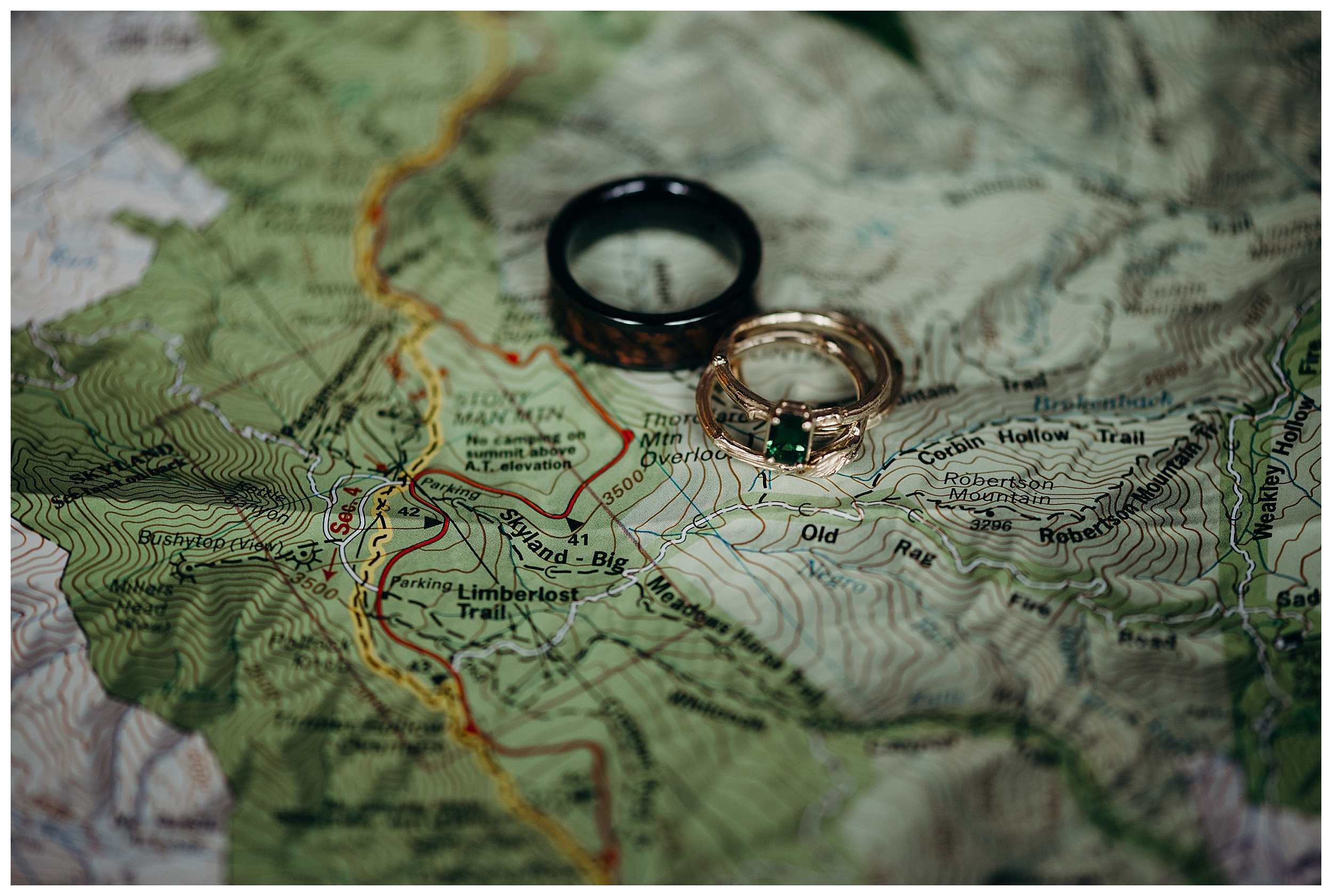 DC-VIRGINIA-WEDDING-PHOTOGRAPHER-SHENANDOAH-NATIONAL-PARK-SKYLAND-ELOPEMENT_0059.jpg