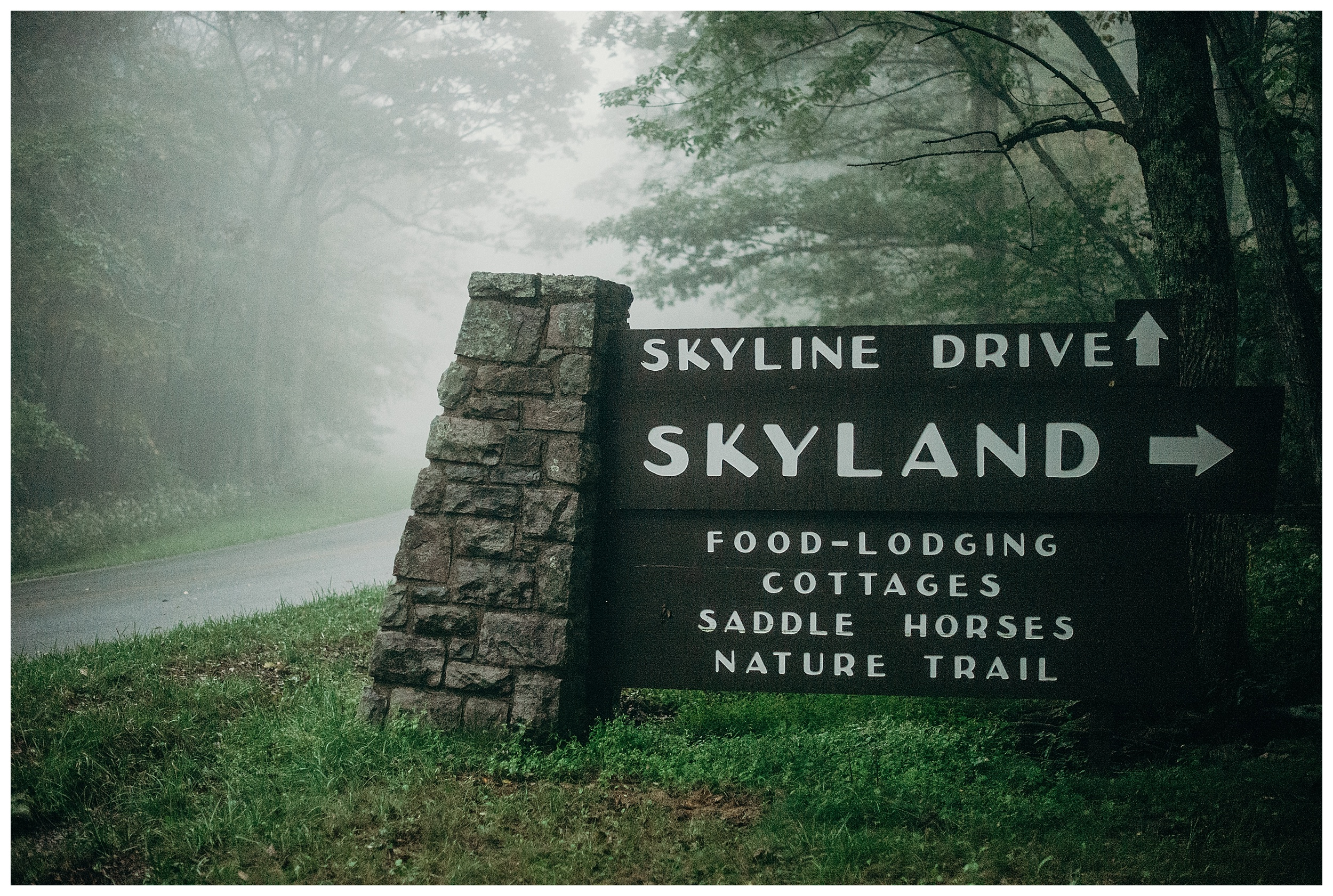 DC-VIRGINIA-WEDDING-PHOTOGRAPHER-SHENANDOAH-NATIONAL-PARK-SKYLAND-ELOPEMENT_0078.jpg